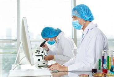 Interpretación y Análisis de la Norma ISO 17025 24 hrs (Laboratorios)